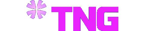 Công ty cổ phần đầu tư TNG Holdings Việt Nam