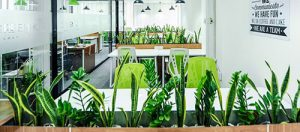 Dự đoán xu hướng thiết kế nội thất văn phòng HOT TREND cho năm 2021